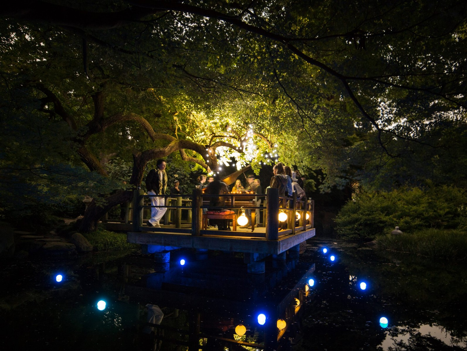 Lightswitch Night Garden At Flower Piano